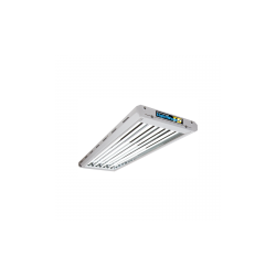 Lightwave T5 44- HO 216W Stecklingsarmatur