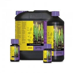 B´CUZZ Atami Soil Booster 100ml