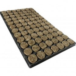 Speedgrow Anzuchtmatte mit 84 Anzuchtwürfeln