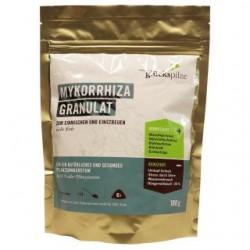 Tyroler Glückspilze Mykorrhiza 180g