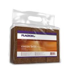 Plagron Cocos Brix 6x 9 Liter