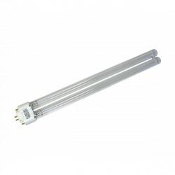 Clean Light Ersatzlampe für Pro