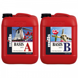 Mills Basis HC A und B 10 Liter