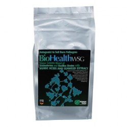 Biohealth WSG TH BS 1kg