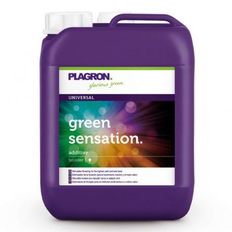 Plagron Green Sensation 5 Liter Blütestimulator