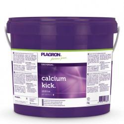 5kg Plagron Calcium Kick
