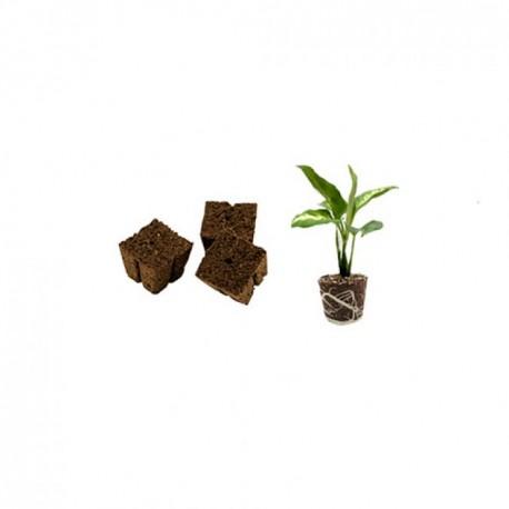 Eazy Plug® Eazy Block 7,50 x 7,50 x 6 cm getrocknet